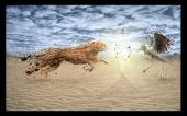 fond écran 11-guépard