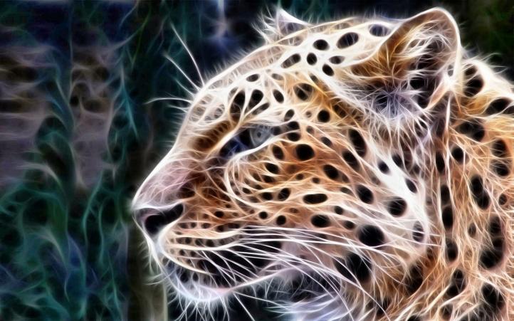 Fond d 39 cran gratuit 03 leopard fonds d 39 cran animaux for Fond ecran gratuit animaux