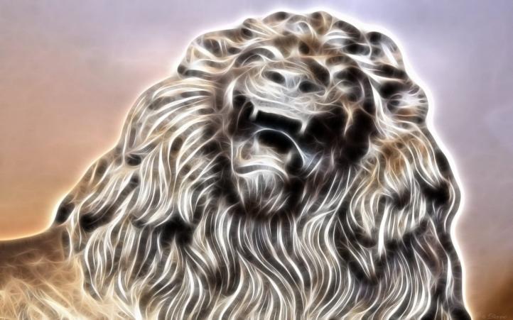 lion-23 fond écran wallpaper