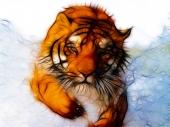 fond écran Tigre Fractal