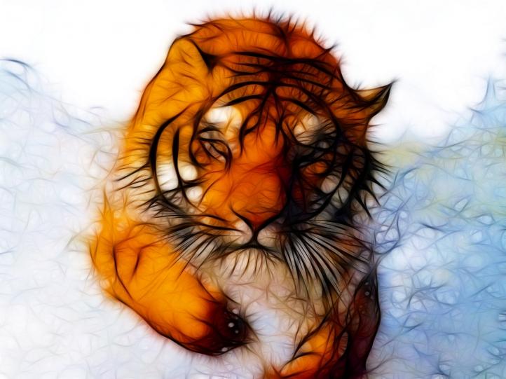 http://www.weesk.com/wallpaper/animaux/tigres/tigre-fractal/tigre-fractal-720px.jpg