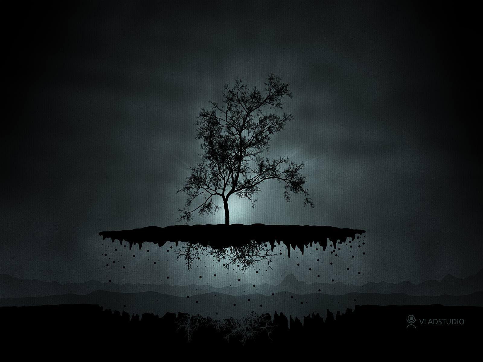 fond dcran arbre dans le ciel - Arbre Ciel