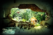 fond écran jungle urbaine