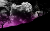 fond écran Paysage-Lune-Visage