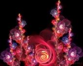 fond écran Flowering..