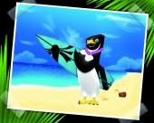 fond écran Pingouin surf