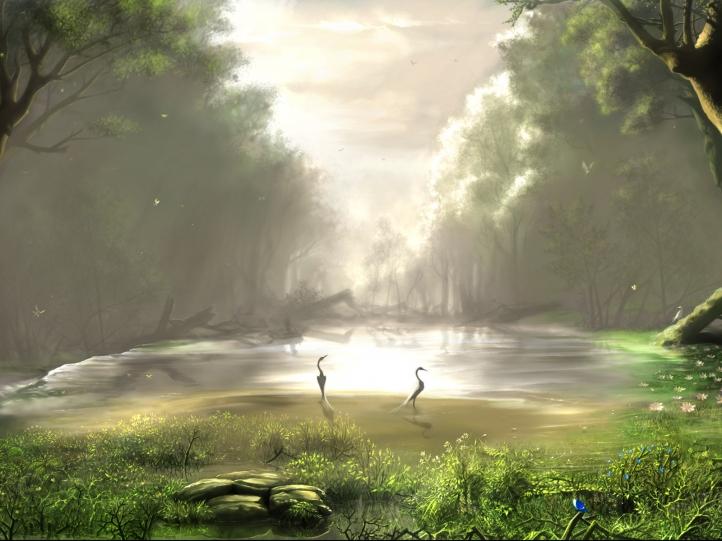 paysage forestier fond écran wallpaper