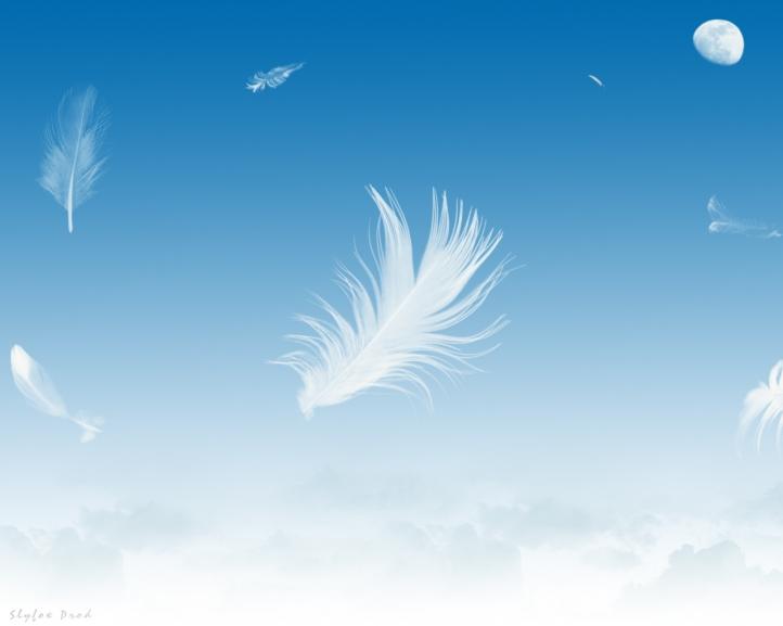 fond d 39 cran gratuit plume dans le ciel fonds d 39 cran art digital gratuits plume dans le ciel. Black Bedroom Furniture Sets. Home Design Ideas