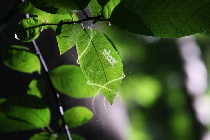 nature relax fond écran wallpaper