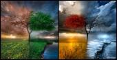 fond écran Seasonscape