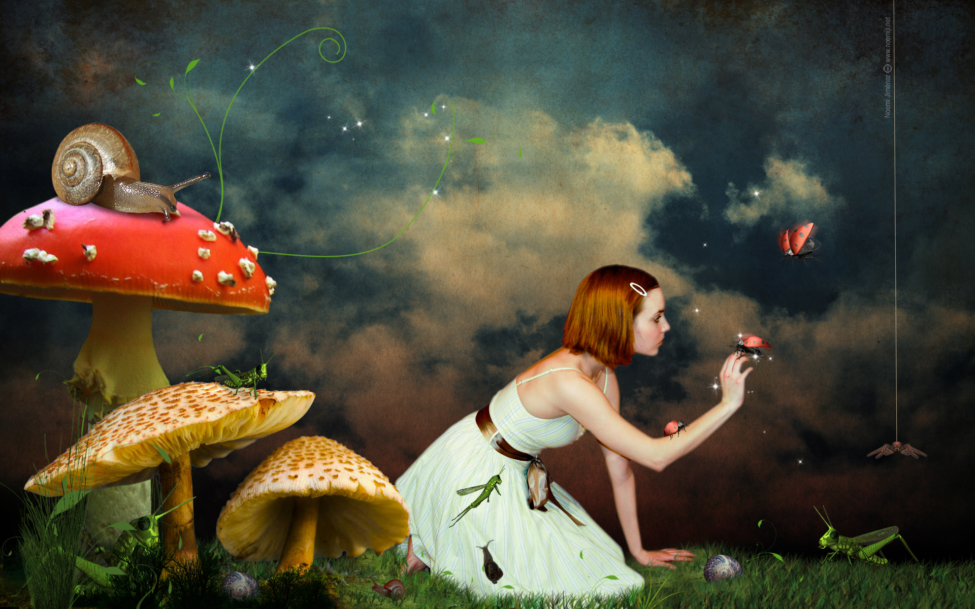 Child fairy tale mushroom bird digital art 1920x1200