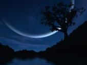 fond écran Nuit lunaire