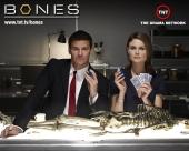 fond écran Bones