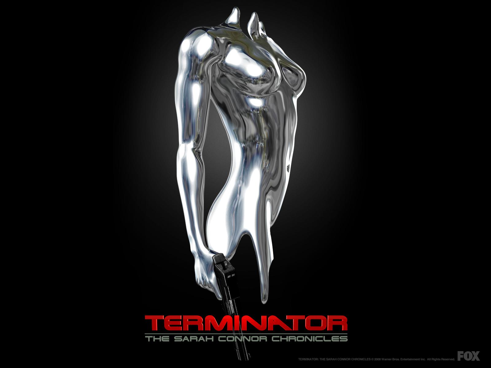 terminator-the-sarah-connor-chronicles-43-terminator-sarah-connor