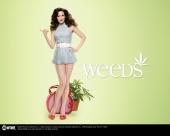 fond écran Weeds
