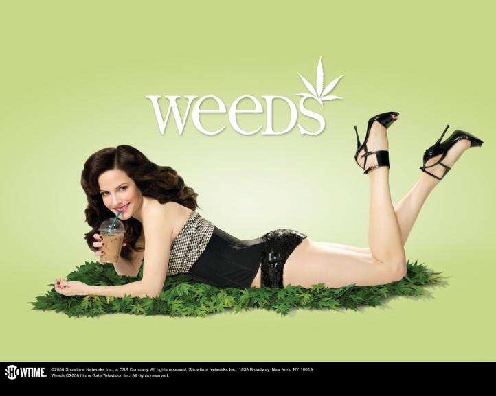weeds wallpaper. Weeds fond écran wallpaper