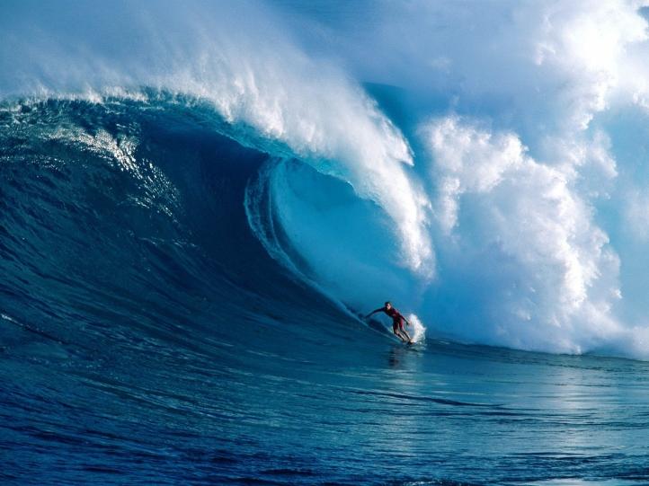 Surf fond écran wallpaper